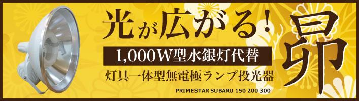 SUIBARU300